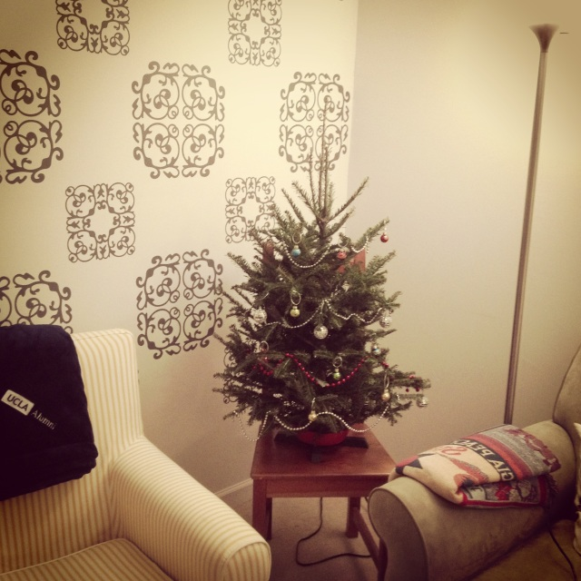 FREDRICK THE FIR (the 2nd)! Such a wonderful pine scent, thanks Freddy!