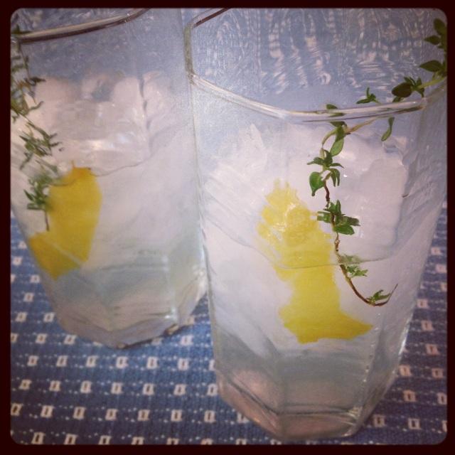 Suzanne's Lemon Thyme