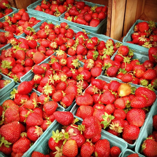 Big Rig Farms Strawberries